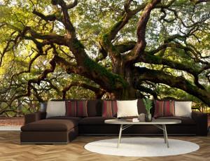 Foto tapeta Razgranato drvo Tapet034