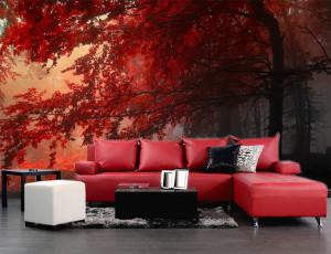 Foto tapeta Šuma i crveno lišće Tapet055