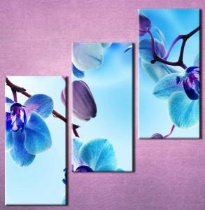 Slika na platnu Plava orhideja 3025_3