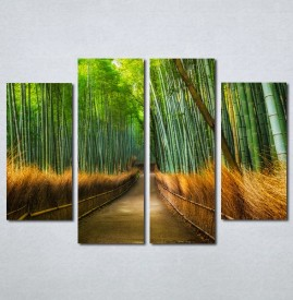 Slike na platnu Bambus Nina215_4