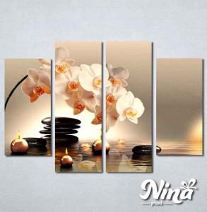 Slike na platnu Bela orhideja Nina225_4