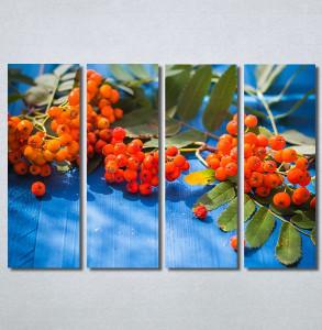 Slike na platnu Bobice Nina30258_4