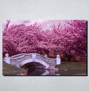 Slike na platnu Boje jorgovana Nina108_P