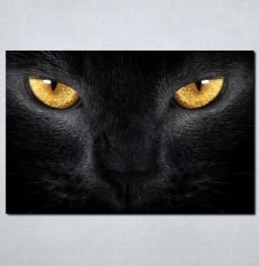 Slike na platnu Crna mačka Nina030_P