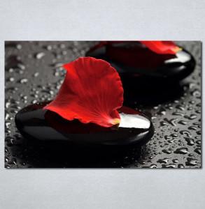 Slike na platnu Crvena latica cveta Nina 124_P