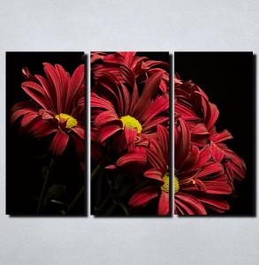 Slike na platnu Crveno cvece Nina115_3