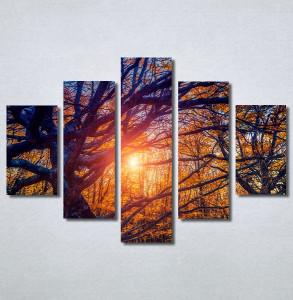 Slike na platnu Drvo Nina30302_5