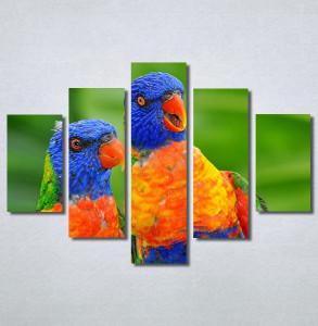 Slike na platnu Dva papagaja Nina30313_5