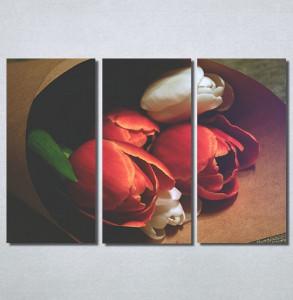 Slike na platnu Lale Nina30189_3