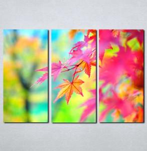 Slike na platnu Lišće u boji Nina061_3
