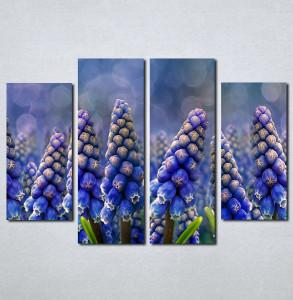 Slike na platnu Ljubicasti cvet neobičnog oblika Nina002_4
