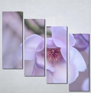 Slike na platnu Ljubicasti cvet Nina001_4