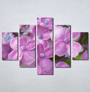 Slike na platnu Ljubicasto cvece Nina081_5