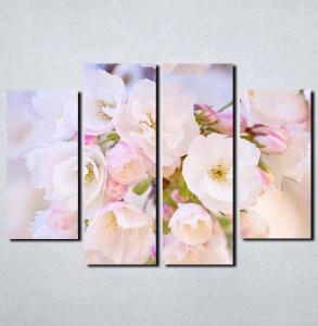 Slike na platnu Najlepši cvet Nina113_4