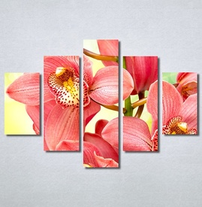 Slike na platnu Orhideje 2 Nina30306_5