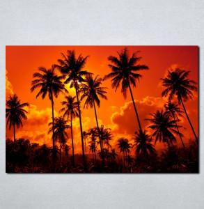 Slike na platnu Palme i zalazak sunca Nina062_P