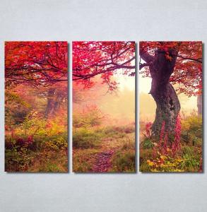 Slike na platnu Prelepa jesen u šumi Nina30244_3