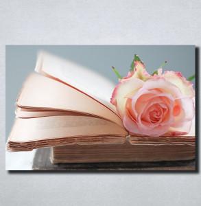 Slike na platnu Ruza i knjiga Nina164_P