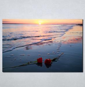 Slike na platnu Ruže na plaži Nina066_P