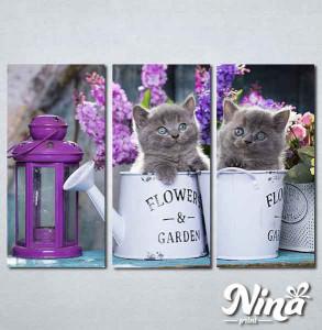 Slike na platnu Sive mačke Nina311_3