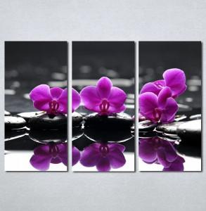 Slike na platnu Wellness spa ljubicasta orhideja Nina183_3
