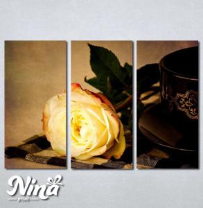 Slike na platnu Zuta ruza Nina242_3