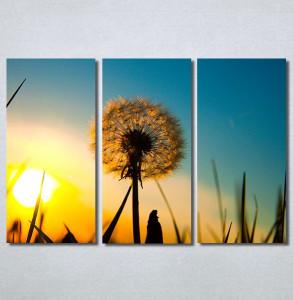 Slike na platnu Žuti maslacak Nina30235_3