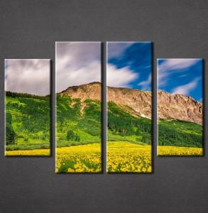 Slika na platnu priroda Žuto cveće Nina3075_4