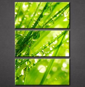 Slika na platnu Zelena trava Nina3051_3