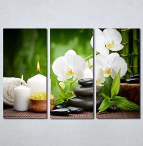 Slike na planu Wellness spa bela orhideja Nina 181_3