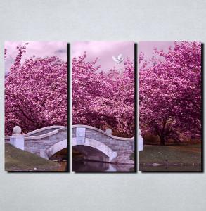 Slike na platnu Boje jorgovana Nina108_3