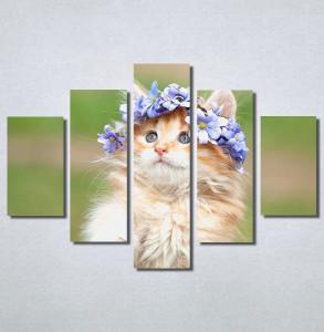 Slike na platnu Cat Nina30230_5