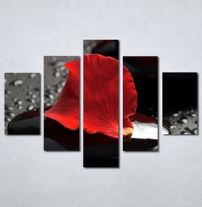 Slike na platnu Crvena latica cveta Nina124_5