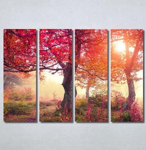 Slike na platnu Crveno drvo u jesen Nina30370_4
