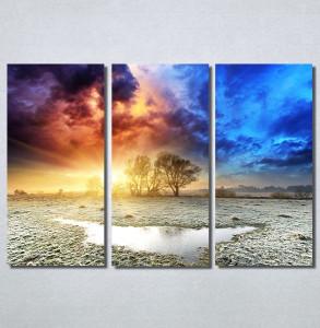 Slike na platnu Drvo na obali Nina30226_3