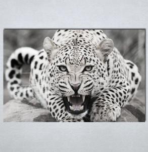 Slike na platnu Leopard Nina123_P
