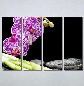 Slike na platnu Ljubicasta orhideja i bambus Nina30213_4