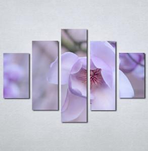Slike na platnu Ljubicasti cvet_Nina001_5