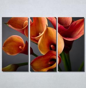 Slike na platnu Narandžaste kale Nina30216_3