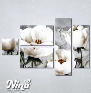 Slike na platnu Nezno beli cvet Nina347_5