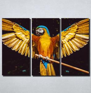 Slike na platnu Papagaj Nina152_3
