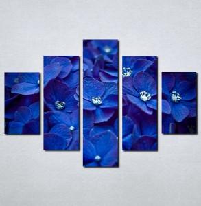 Slike na platnu Plavo cvece Nina059_5