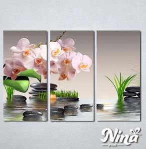 Slike na platnu Roze orhideja Nina304_3