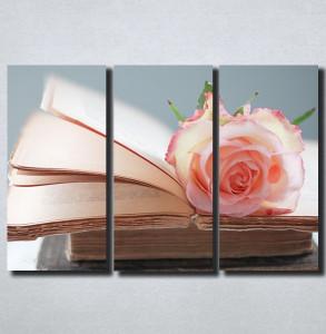 Slike na platnu Ruza i knjiga Nina164_3