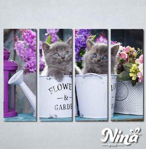 Slike na platnu Sive mačke Nina311_4