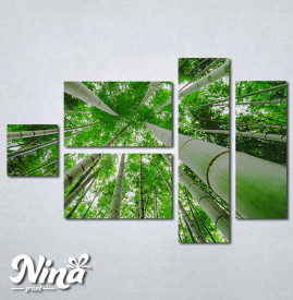 Slike na platnu Suma bambusa Nina329_5