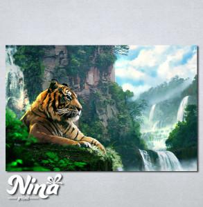 Slike na platnu Tigar Nina245_P