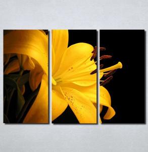 Slike na platnu Zuti cvet Nina103_3
