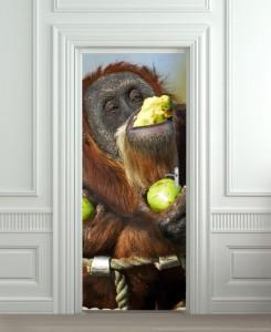 Nalepnica za vrata Majmun i voće 6008
