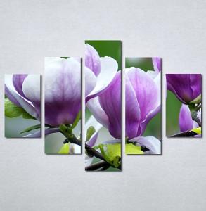 Slika na platnu Ljubičasta magnolija Nina3097_5